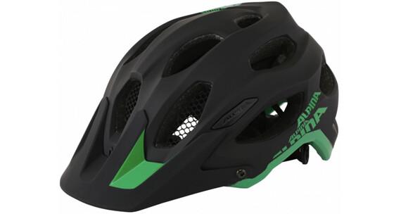 Alpina Carapax Helmet black-green